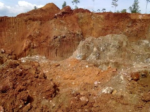 力勤矿业2019年度红土镍矿贸易量占中国市场28%